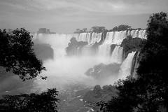 Cataratas del Iguazú III (mavricich) Tags: cataratas falls monocromo monocromático misiones argentina agua arte árbol sol sombras iguazú naturaleza cielo cascada parque neblina