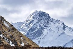 Swargarohini II (6247 m) (_Amritash_) Tags: himalayas himalayanranges swargarohini swargarohiniii6247m mountains snowcappedmountains snowcappedpeaks massif saraswatirange bandapoonchrange garhwalhimalayas garhwal uttarakhand trek wintertrek