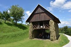 DSC_1877 (gregorv) Tags: slovenia slovenija kum planine mountains mountain nature narava