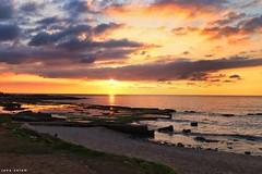 #sunset #photographyoftheday #landscape_captures #naturelovers #nature #naturelovers #sunsetphotography #sun #sea #clouds #photography #flickr #explore #capture #pic (salam.jana) Tags: sunset photographyoftheday landscapecaptures naturelovers nature sunsetphotography sun sea clouds photography flickr explore capture pic