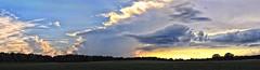 Country Road - Evening Sky (Steve InMichigan) Tags: panoramic sunset sunsetsky clouds skyline evening eveningsky countryroad field canoneosrebelt5i vivitarwideangle28mmf25kinokironlens fotodioxnikeoslensadapter