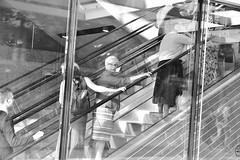 Going Up 3 (FunkyPepper) Tags: vancouver escalator goingup streetphotography streetwise candidstreetphotography reflection people woman candidshot photographer canada nikon d810 blackandwhite bw