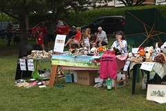 Dog Adoption and Rescue stand (tiger289 (The d'Arcy dog supporters club)) Tags: eastpreston westsussex villagegreen dogs penangvillagerestaurant flowers trees beach waves breakwaters sea searoad sealane heraldry architecture clockhouse clocktower plaques villagelife cars boules fairground villagefestival park greenbelt plant tree landscape woods outdoor garden estate festival games eastprestonvillagefestival westsussexfirerescue fireengine manfiretender rescuevehicle parade carnival townband seascouts carnivalfloats fancydress dogshow agility obedience mongrel crossbreed thoroughbred behaviour walk elegance contest allbreeds dog people grass animals