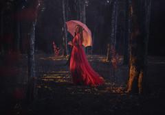 Scarlet Forest (Deltalex.) Tags: alexbenetel deltalex girl woman forest sydney australia instagramcontrolsmyselfportrait instagramcontrolsmyphotoshoot lady reddress magical fairytaledress magicalforest sunset goldenhour conceptualphotography fineartphotography