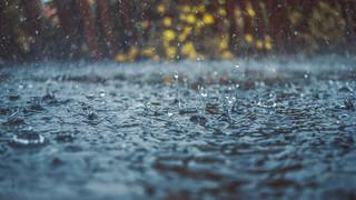 Rainy days and...