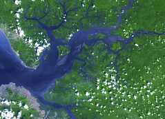 Image acquired by NASA's Terra spacecraft of the Sierra Leone estuary. Original from NASA. Digitally enhanced by rawpixel.