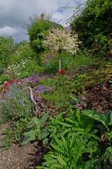 1479-06L (Lozarithm) Tags: caenhill devizes wilts canals kennetavon k50 pentax zoom 1855 smcpda1855mmf3556alwr