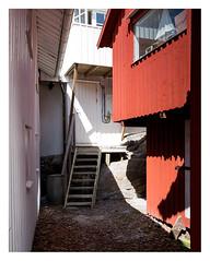 Backstreets of Smögen (leo.roos) Tags: stairs stairway staircase house huis window raam door deur colour kleur wood hout sonycarlzeissvariotessarfe1635mmf4zaoss variotessar16354 sel1635z variotessartfe41635 sonycz16354 smögen scherenkust archipelago swedenspring2018 a7rii smögendyxummeetjune2018 darosa leoroos red rood