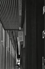 At The New Pier 17 (sjnnyny) Tags: afs24853545gedvr pier17 nyc southstreetseaport architecture scale verticals stevenj sjnnyny lowermanhattan touristvenue nikond750