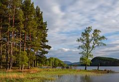 Evening Light at The Breezy Loch (Geoff France) Tags: loch scottishloch landscape scottishlandscape water mere lake cairngorms cairngormsnationalpark highlands scottishhighlands pityoulish longexposure nikon