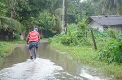 DSC_5891 (madelinedahm) Tags: urbanflooding srilankaflood srilanka colombo kelaniganga floodplain drainagedisaster risk reduction iwmi