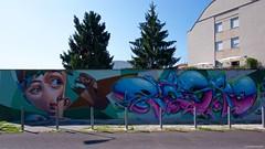IMGP5400 Street Art (Claudio e Lucia Images around the world) Tags: murales graffiti graffito paintedwall murale milano greco viazuretti face streetart art arton wall walkingthecity pentax pentaxk3ii sigma sigma1020 pentaxart new portrait nicegirl lady pastello girl girls