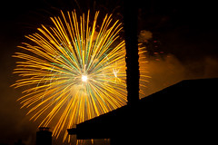 Sunflower in the Sky (markmacbride) Tags: fireworks colors 4thofjuly nightsky burst longexposure