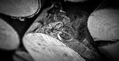Wedding rings (johnnewstead1) Tags: wedding weddingday weddingphotographer weddingphotography norfolk norfolkwedding norfolkweddingphotographer norfolkbride ring rings weddingrings blackwhite blackandwhite monochrome johnnewstead simonwatsonphography simonwatson olympus em1 mzuiko