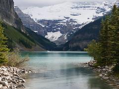 CANADIAN ROCKIES (Rob Patzke) Tags: mountain landscape lake tree canada rockies lumix lx100 panasonic louise snow ice glacier reflection