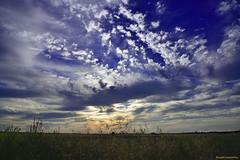 Otra mañana, otro cielo.... Otro dia! - Other morning, another sky.......Another day ! (ricardocarmonafdez) Tags: paisaje landscape cielo sky nubes clouds sunlight contraluz backlit backlighting blue country field countryside ricardocarmonafdez nikon d850 24120f4gvr naturaleza nature