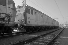 boschetto marzo 2018 #21 (train_spotting) Tags: novaraboschetto tigre tigrone e652159 trenitaliacargo trenitalia ticargo divisionecargo mir merciitaliarail nikond7100