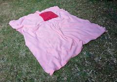 Summer Evening (Stephen Howett) Tags: summer blanket absence nopeople cushion pillow leica leicaq england lawn grass blossom