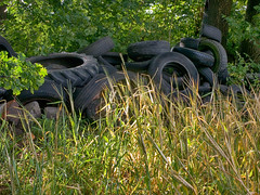 Nature and agriculture (BeMo52) Tags: natur nature waste abfall sondermüll reifen tires kornfeld grain schrubs trees gras gebüsch