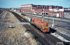 3556 A1513 1st passenger train Fremantle line Fremantle 27 February 1983 (RailWA) Tags: railwa philmelling westrail 1983 a1513 1st passenger train fremantle line