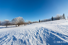 Winter landscape in Poland (aniadudek) Tags: winter landscape poland