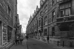 The Avenue (J. E. Foster) Tags: britain cambridge cambridgeshire england nikond7100 uk sigma1020mm1456exdchsm urban streetphotography monochrome blackandwhite gothic architecture street
