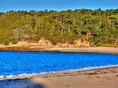 Winter on the beach I (elphweb) Tags: sea seaside ocean water hdr highdynamicrange nsw australia beach sand waves