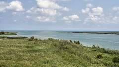 2583  Desembocadura del Rio Ebro, Delta del Ebro, Tarragona (Ricard Gabarrús) Tags: mar agua rio delta desembocadura ebro water playa ricardgabarrus nubs cauce natura naturaleza olas ricgaba olympus hierba