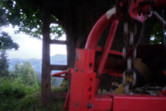UNDER OUR 400 YEARS OLD LIME (LitterART) Tags: skink pinhole art chain ledder leiter linde lime limetree tree baum steiermark österreich austria