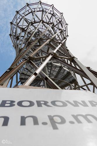 Wycieczka na Górę Borową-56