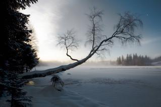 Øvresetertjern in winter