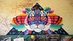 Huascaya / Campo - 14 jul 2018 (Ferdinand 'Ferre' Feys) Tags: huascaya gent ghent gand belgium belgique belgië streetart artdelarue graffitiart graffiti graff urbanart urbanarte arteurbano ferdinandfeys