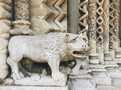 Smiling lion (Strunkin) Tags: lion vajdahunyadcastle chapel