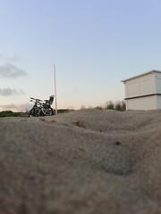 Vista al ras del suelo (galletasdelmundo) Tags: juegolvm jacjierueda playa aniversario summer beach atardecer diaenfamilia diasespeciales escueladejackie