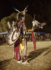 Waiting with anticipation (PeterThoeny) Tags: stanford stanforduniversity california siliconvalley sanfranciscobay sanfranciscobayarea southbay powwow stanfordpowwow festival competition dance costume americanindian portrait person boy man feather light backlight night sony a7 a7ii a7mii alpha7mii ilce7m2 fullframe vintagelens dreamlens canon50mmf095 canon 1xp raw photomatix hdr qualityhdr qualityhdrphotography fav100