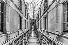 Le Passage Pommeraye (Grégory.Sachs) Tags: passagepommeraye architecture photoderue noiretblanc nantes batiment