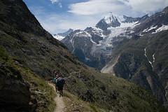 hiking in the swiss alps (Toni_V) Tags: m2408345 rangefinder digitalrangefinder messsucher leicam leica mp typ240 type240 28mm elmaritm12828asph hiking wanderung randonnée escursione mattertal europaweg höhenweg grächenzermatt highroute wallis oberwallis valais switzerland schweiz suisse svizzera svizra europe trail wanderweg sentiero weisshorn bisgletscher gletscher glacier landscape landschaft mountains ©toniv 2018 180714