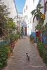 Arzila 15 (Sofia Barão) Tags: marrocos morroco assilah