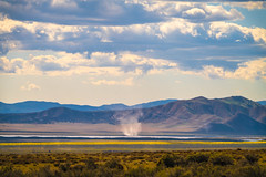 Dust Devil! California Spring Wildflowers Superbloom Carrizo Plains National Monument! God Spilled the Paint Desert Wildflowers Super Bloom! Temblor Range! Elliot McGucken Fine Art Landscape & Nature Photography! Spring Flowers Superbloom! (45SURF Hero's Odyssey Mythology Landscapes & Godde) Tags: sony a7rii fe 24240mm f3563 oss lens sel24240 california spring wildflowers superbloom carrizo plains national monument god spilled paint desert super bloom temblor range elliot mcgucken fine art landscape nature photography wildflower