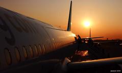 vuelo fly avión airplane amanecer dawn sol sun viaje... (Photo: jesuscm_Huawei P20 series on Flickr)