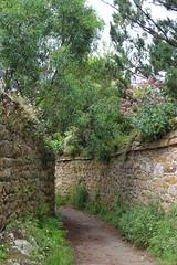 Ruelle de l'île de Bréhat (Côtes d'Armor - Bretagne) (chug14) Tags: sentier ruelle chemin bréhat îledebréhat mur