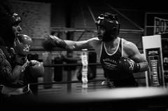 30949 - Hook (Diego Rosato) Tags: boxe boxing pugilato boxelatina ring match incontro bianconero blackwhite nikon d700 2470mm tamron rawtherapee pugno punch gancio hook