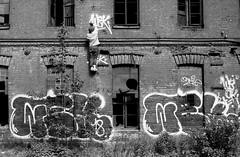 (sele3en) Tags: ilford film analog blackandwhitefilm saintpetersburg saintpetersburggraffiti grain graffiti graffitiphotography graffitibombing russia russiangraffiti russianlife russians russian 35mm 35mmgraffiti 35mmphotography ilfotecddx ilfordpan400 ilfordrapidfixer ilfordilfotecddx saintp wekman wekgraffiti vandal spraycan urban urbanart urbanlife urbanshot