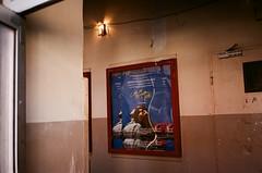(Rodrigo Piedra) Tags: callmebyyourname movie movieposter cinema cinemaparadis