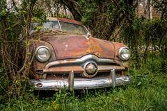 The Next Phrase (Wayne Stadler Photography) Tags: abandoned preserved junkyard georgia classic automotive derelict overgrown vehiclesrust rusty retro vintage oldcarcity rustographer rustography white