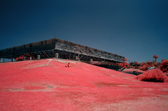 The La Brea Tar Pits (Infrakrasnyy) Tags: infrared ir sony nex 5n full spectrum conversion kolari 550nm la brea tar pits page museum ice age prehistory