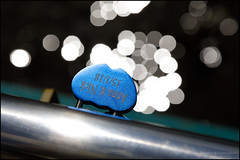 Anna and Nick (G. Postlethwaite esq.) Tags: bakewell dof derbyshire macro bokeh bridge chrome closeup depthoffield engraving fullframe handrail lovelock photoborder photowalk selectivefocus
