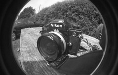 img020 (welshdude1991) Tags: lomography bw cats fisheye ilford 35mmfilm pov pointofview cars