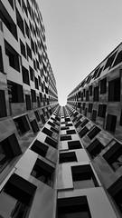 look up1 (changes1023) Tags: berlin blackandwhite lookup