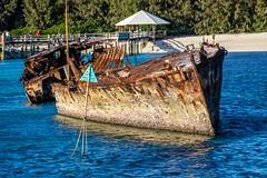 Heron Island Wreck-3 (Quick Shot Photos) Tags: canon canoncollective greatbarrierreef heronisland padi queensland underwater bogie australia au